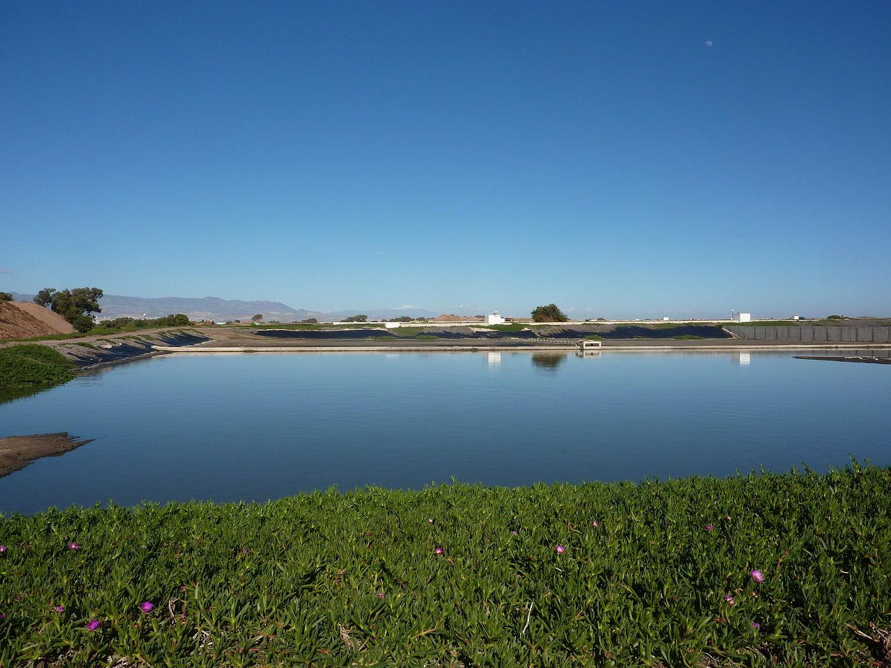 Waste settling pond xdd environmental remediation for Design of ash pond